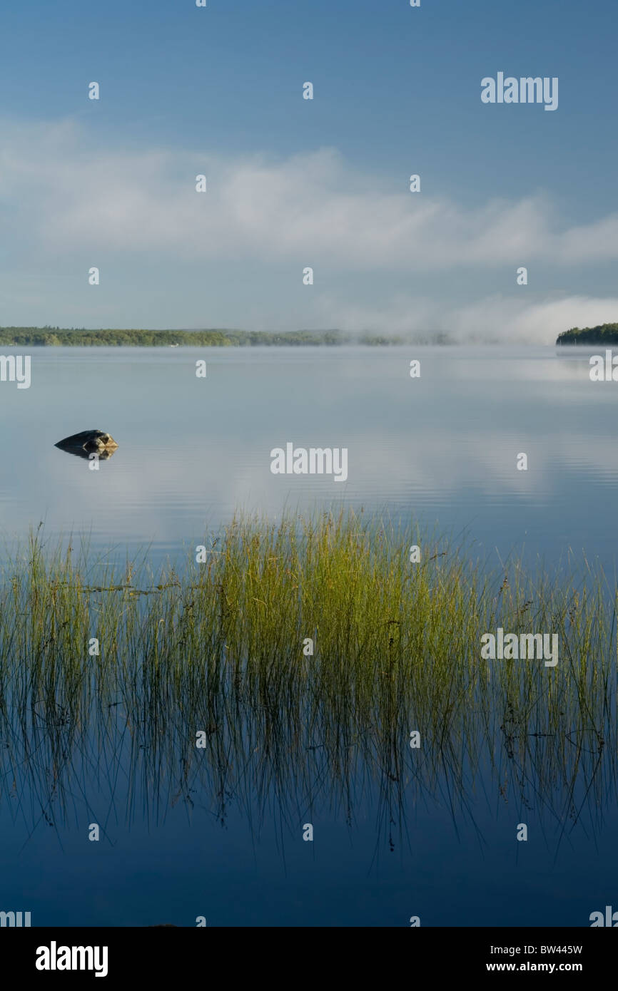 Lake reeds and morning mists on Shubenacadie Grand Lake, Oakfield Provincial Park, Nova Scotia - Stock Image