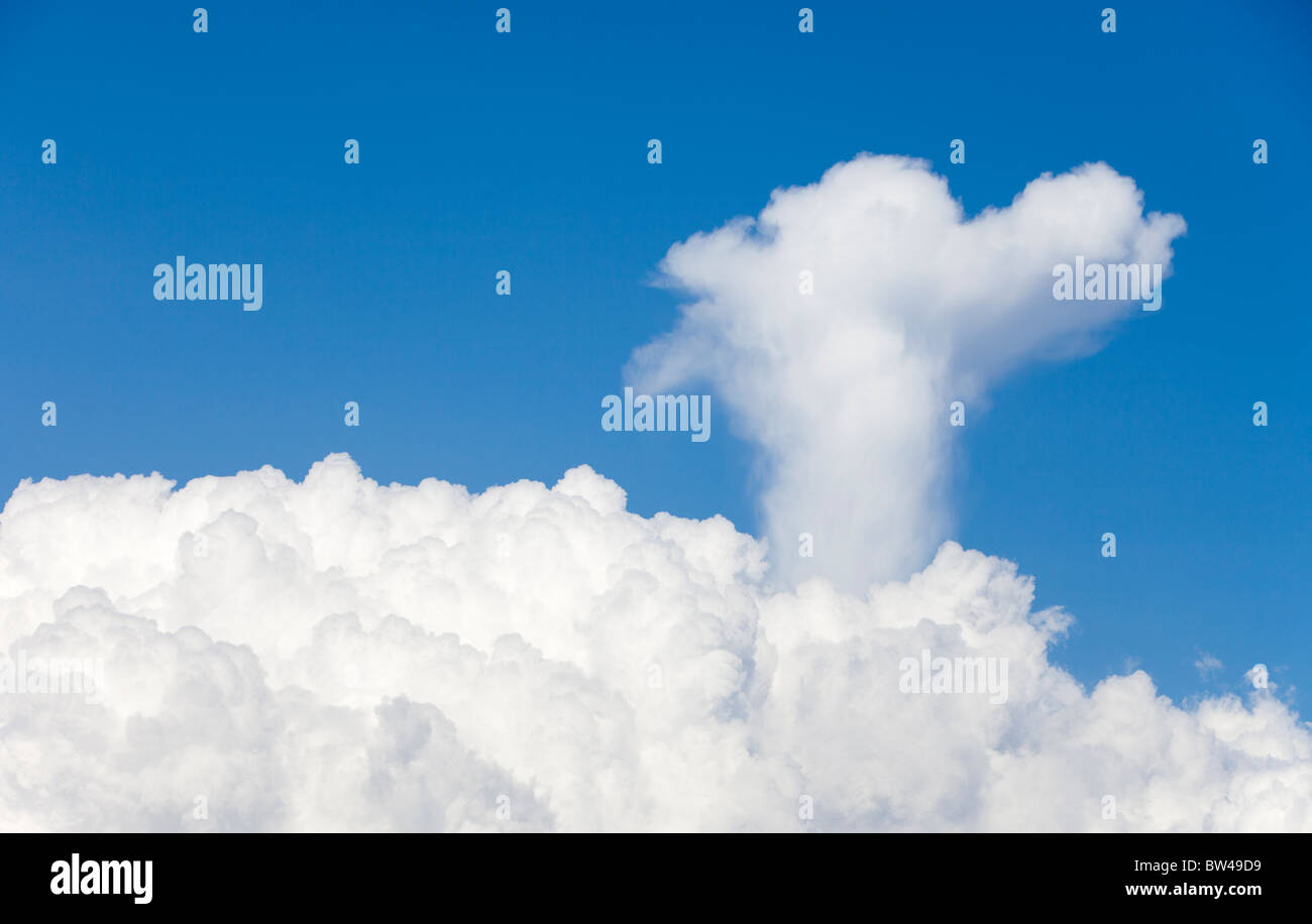 Updraft from cumulus cloud forms a head shape to sky - Stock Image