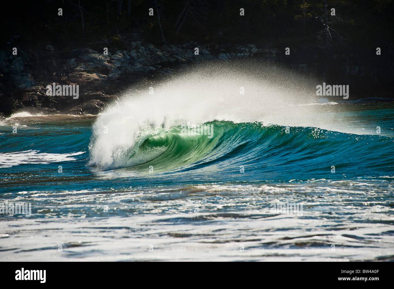 Wave breaking, Sand Beach, Acadia NP, Maine, USA - Stock Image