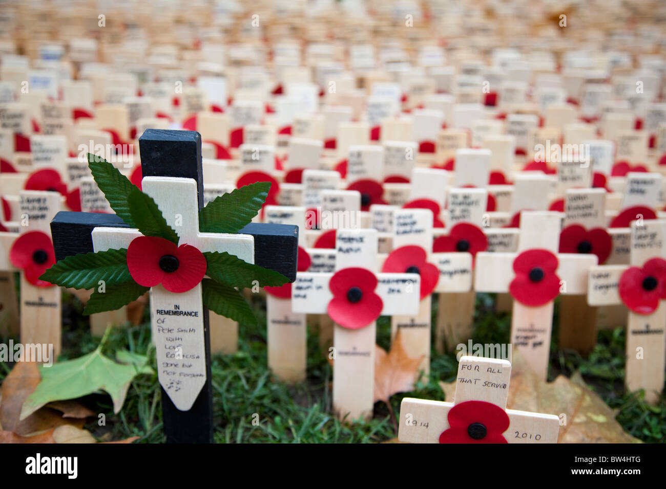Poppies and crosses, Field of Remembrance, Westminster Abbey, London, UK. - Stock Image