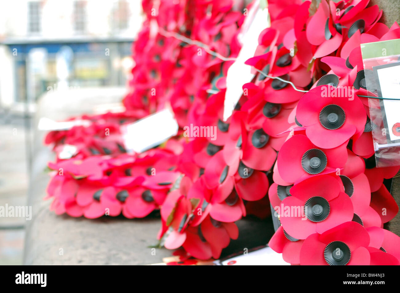 wreaths on remembrance day - Stock Image