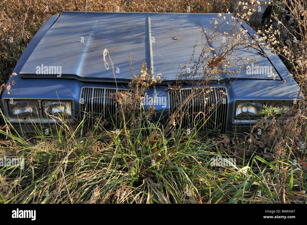 Abandoned car hood, Outdoors, Front View - Stock Image