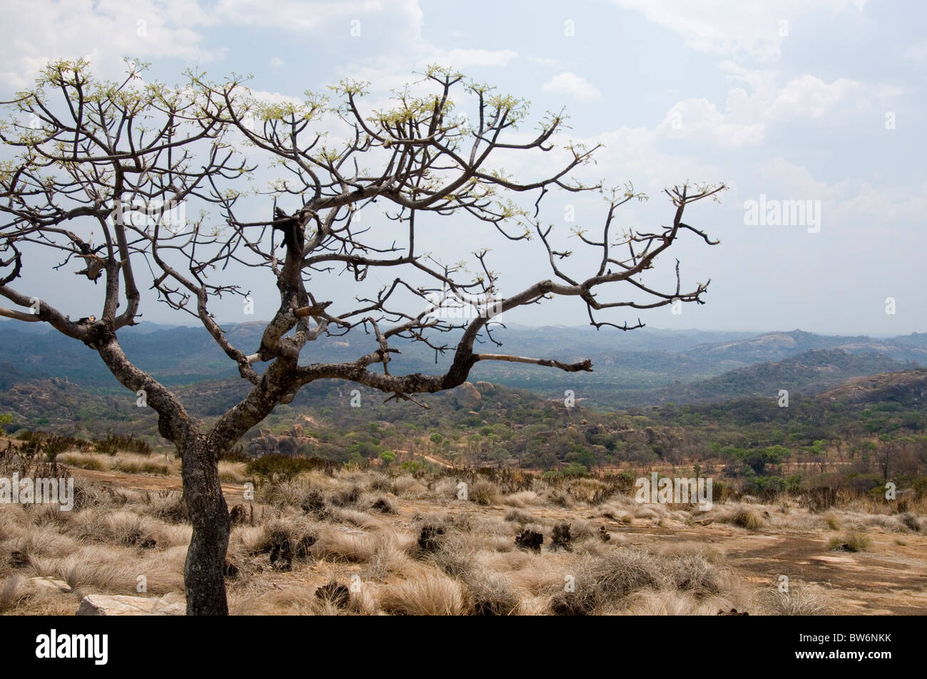 Landscape near the grave of Cecil Rhodes at World's View in the Matopos Hills, western Zimbabwe - Stock Image