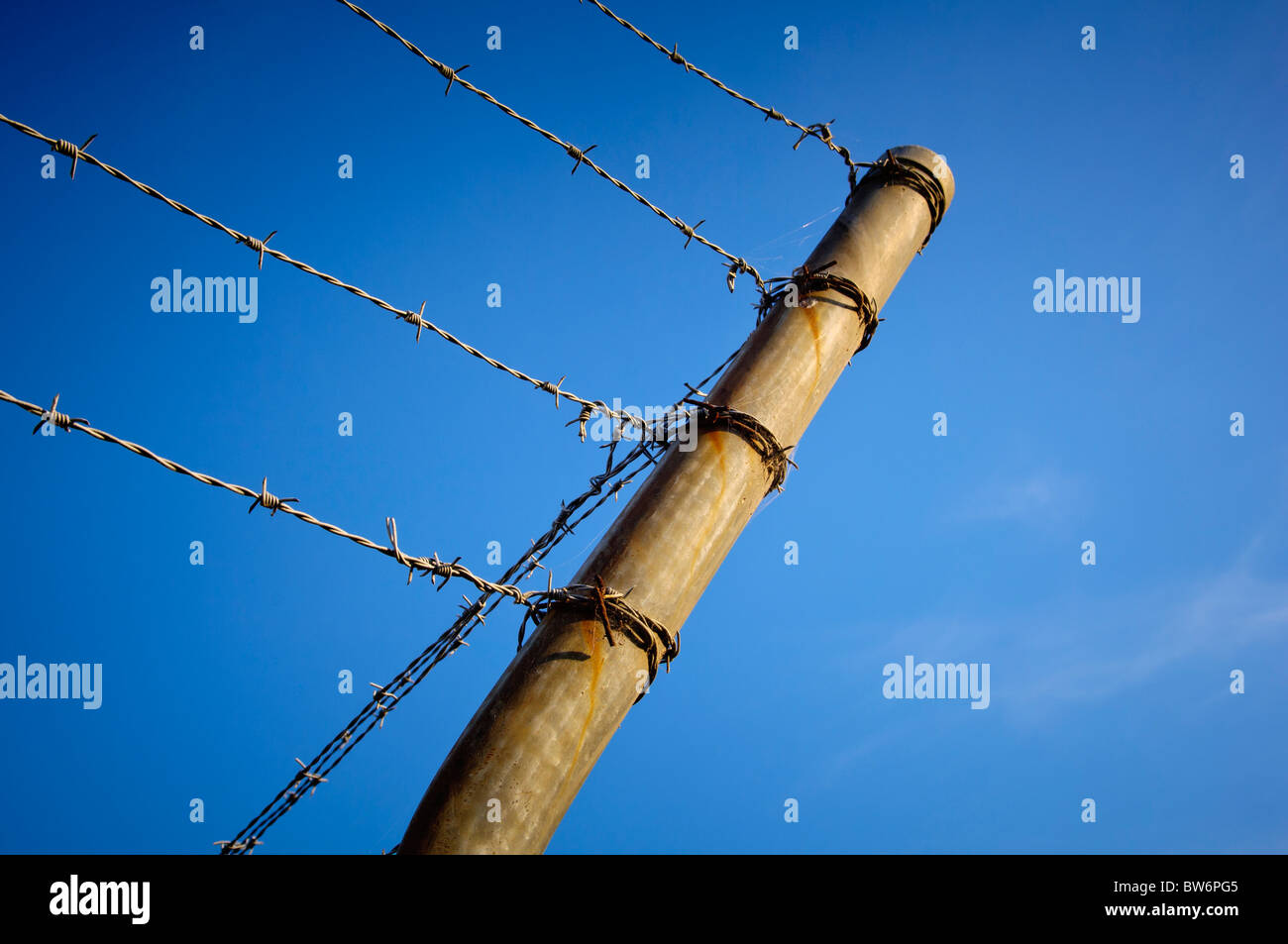 Fence posts with barbed wire running across it against a blue sky - Stock Image