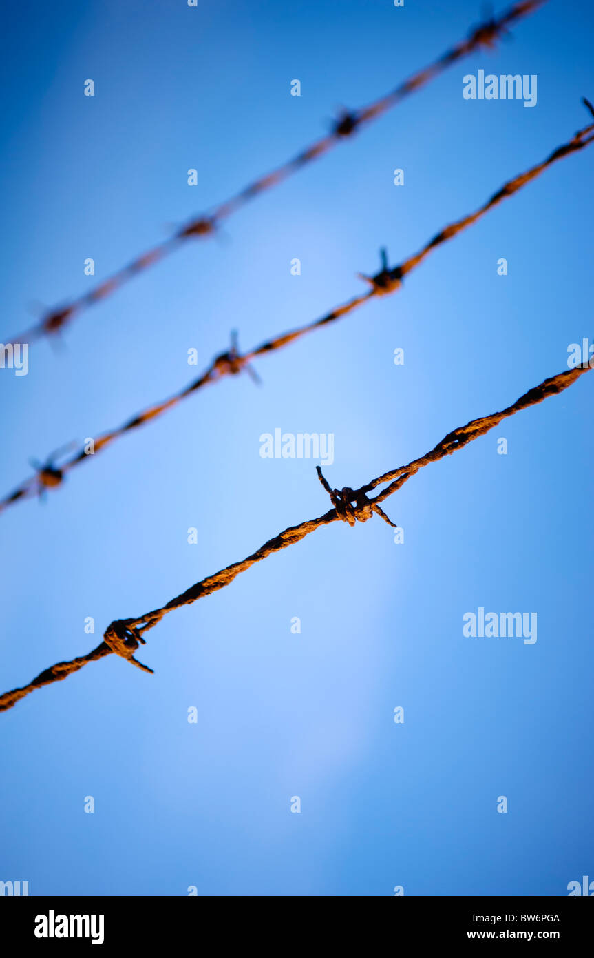 Close up of rusty, old barbed wire against a blue sky - Stock Image
