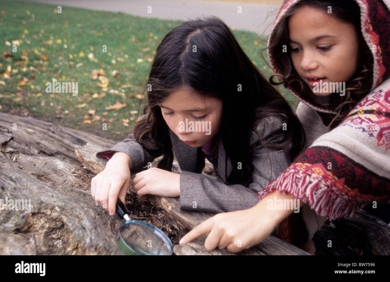 Best friends looking for creepy crawlies in a park. - Stock Image