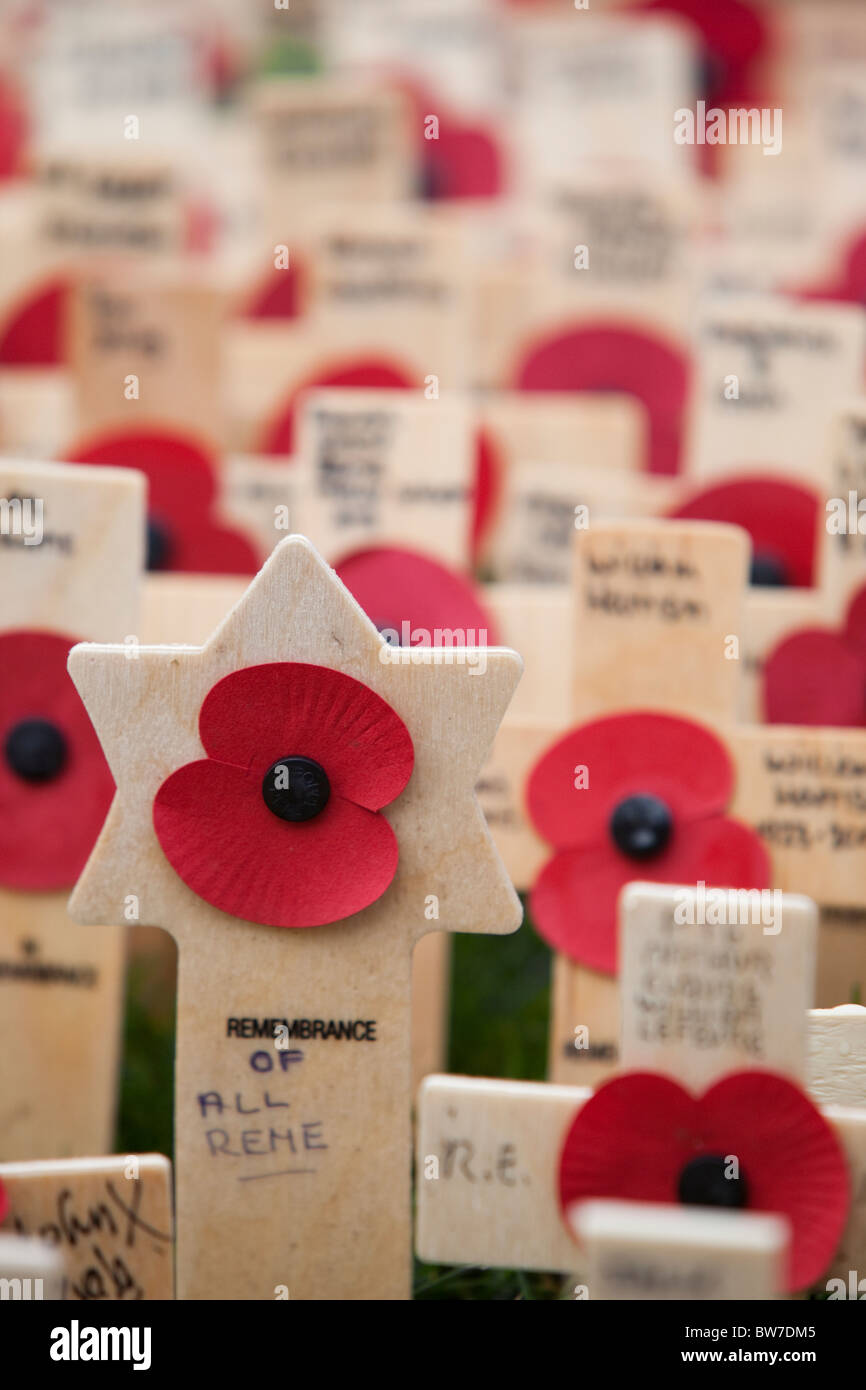LONDON, ENGLAND - Poppies and Crosses on Field of Remembrance at Westminster Abbey - Stock Image