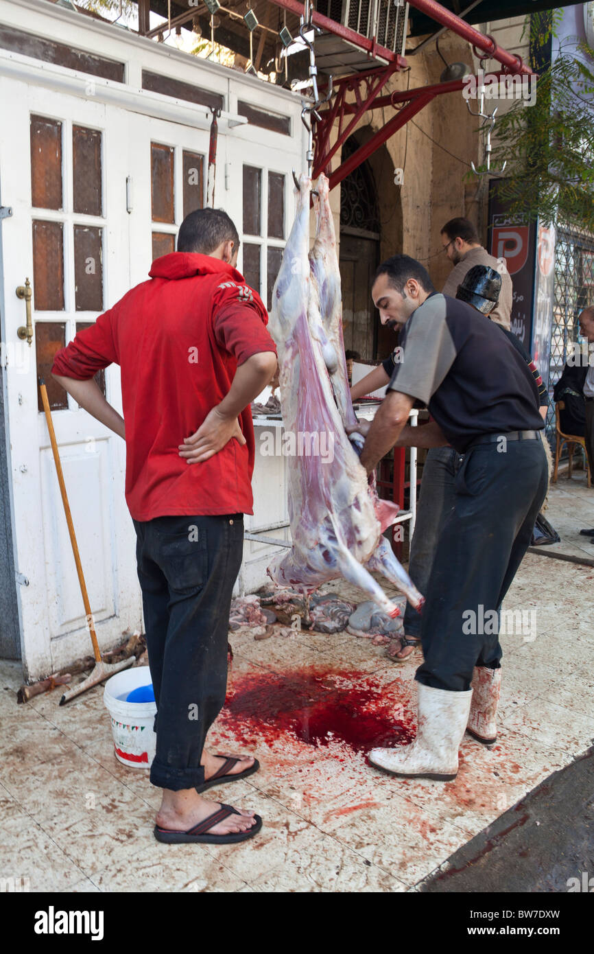 man butchering slaughtered sheep on street, Eid al-Adha, Cairo Egypt - Stock Image