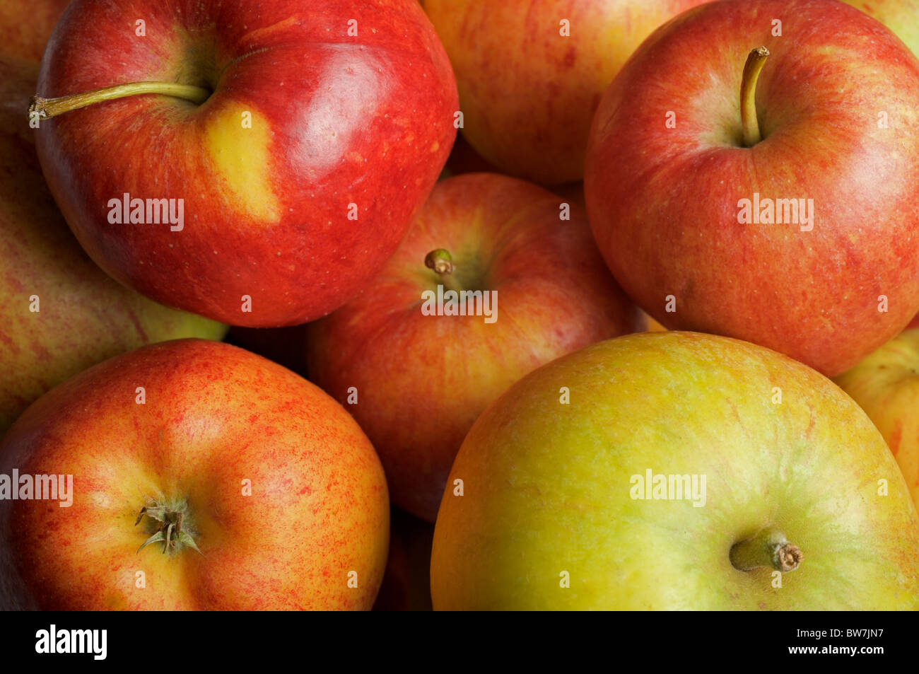 Selection of English apples - Stock Image