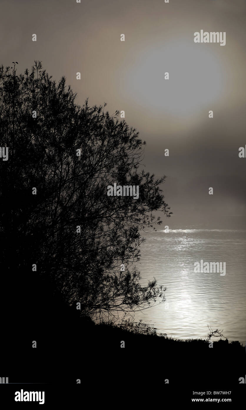 Sun or Moonlit lake with light reflecting on the water - Stock Image