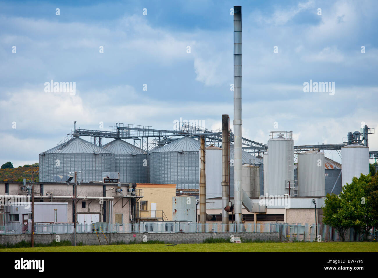Dairygold Agri milk and cheese processing plant works at Mogeely, County Cork, Ireland - Stock Image