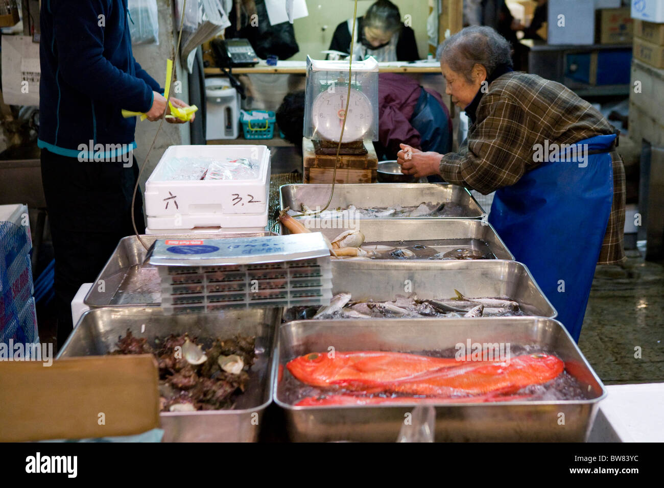 A elderly lady selling fresh fish at Tsukiji Fish Market in Tokyo - Stock Image