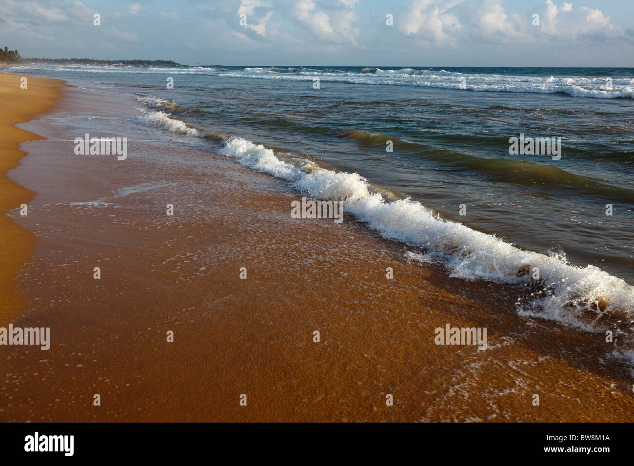 Wave surging on sand on beach - Stock Image