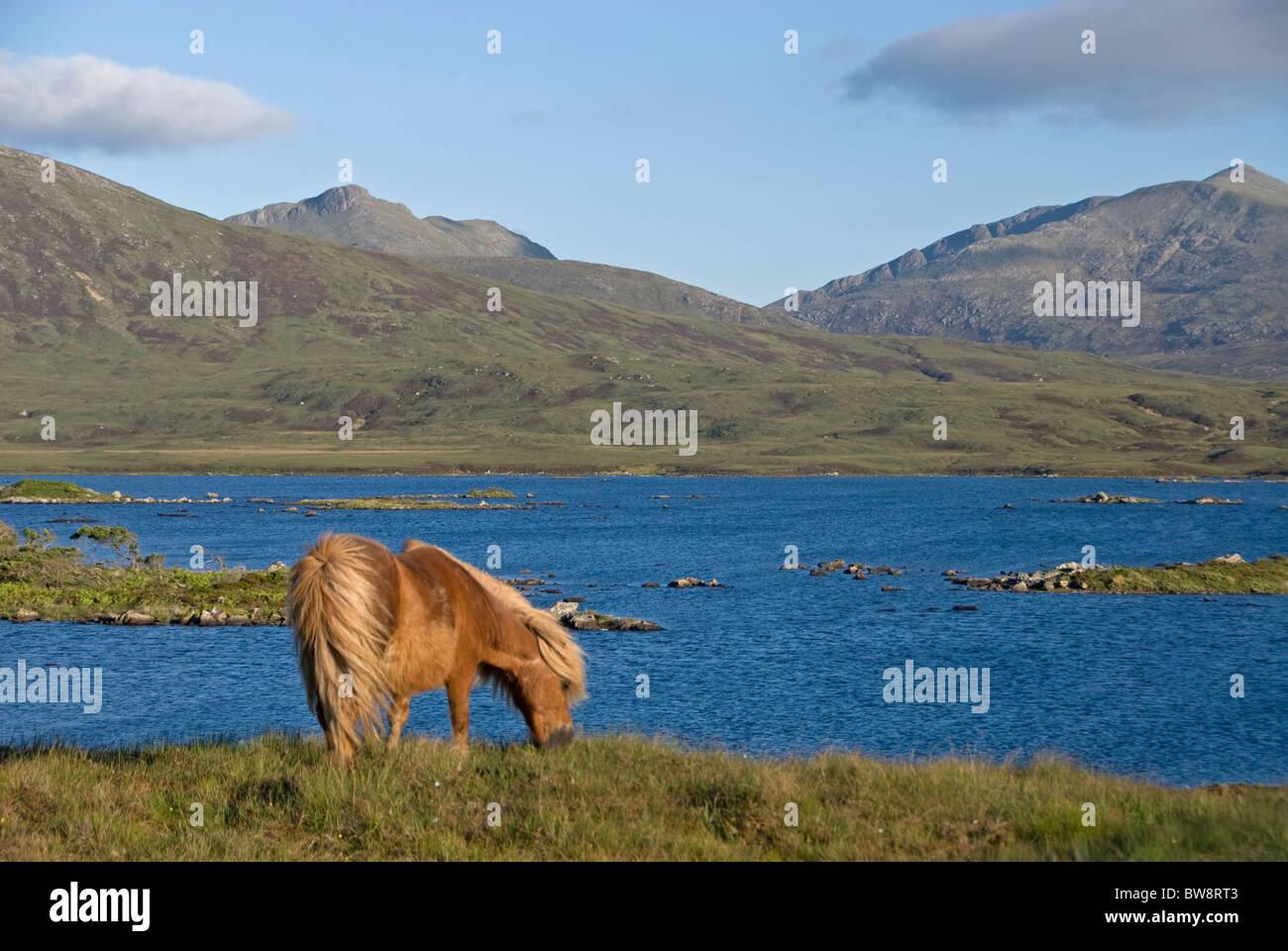 Loch Druidibeg South Uist, Outer Hebrides, Western Isles, Scotland.  SCO 6488 - Stock Image