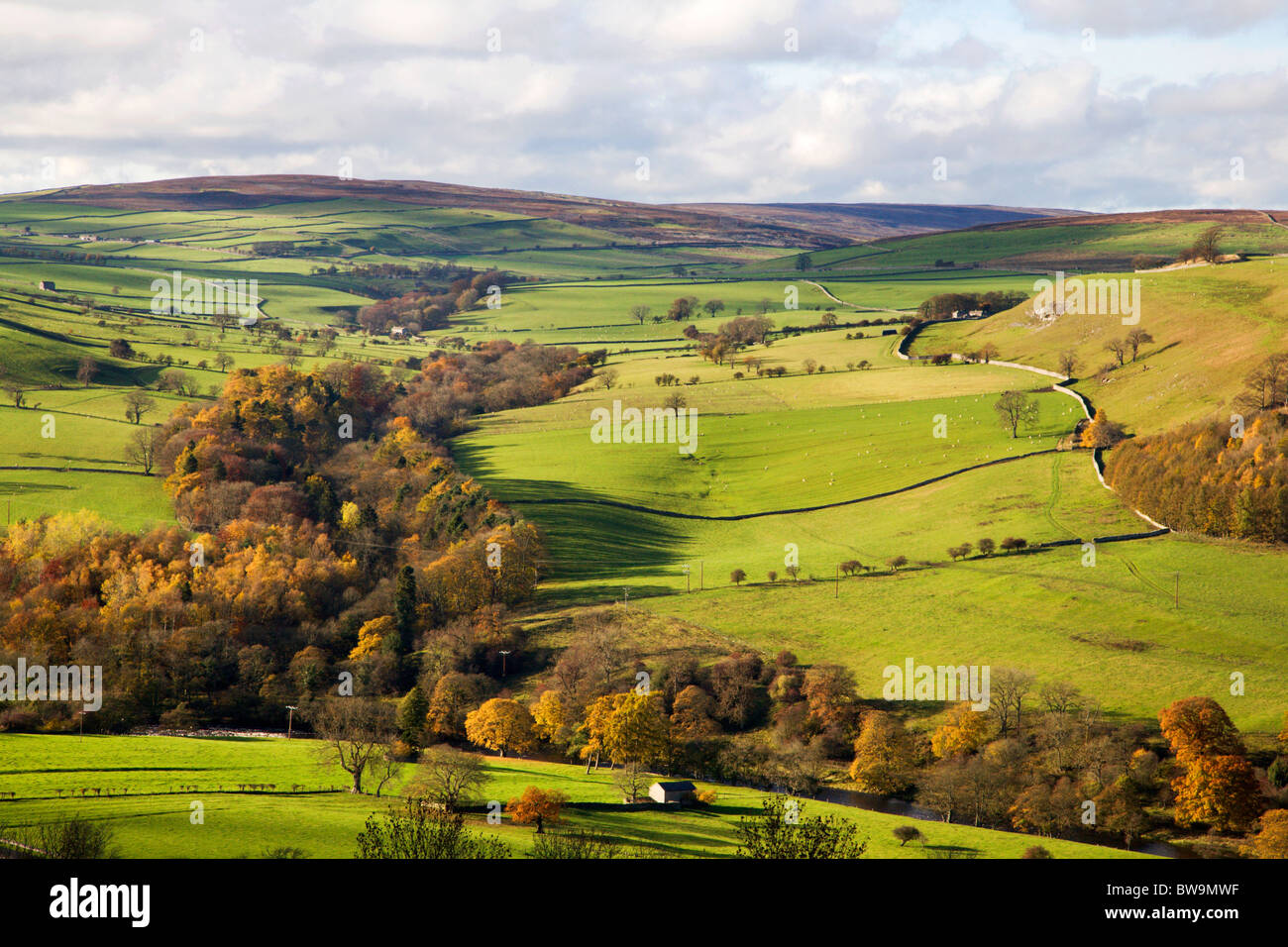 Swaledale from Downholme Viewpoint North Yorkshire England - Stock Image