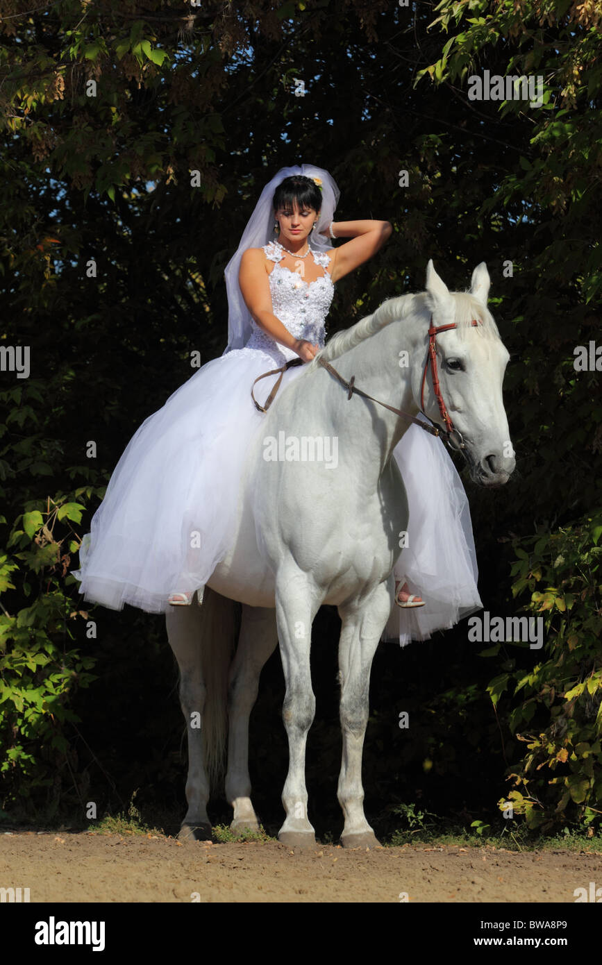 Young Woman In A Wedding Dress On A White Horse Stock Photo Alamy