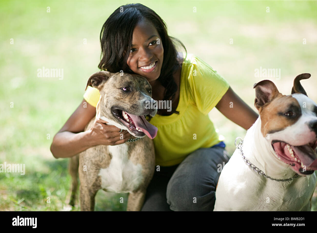 Woman with her pet dogs - Stock Image