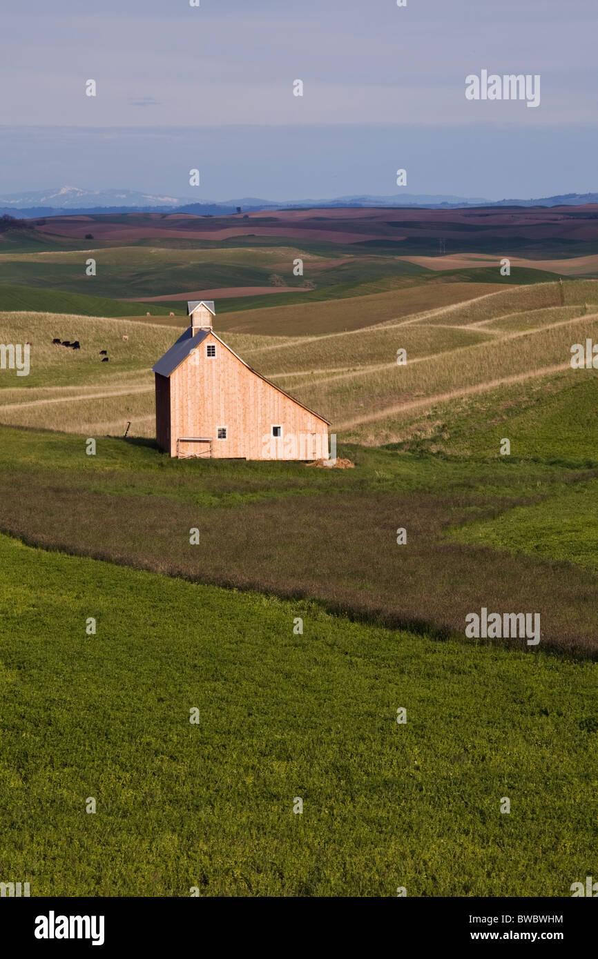 Barn in the Palouse Washington State USA - Stock Image
