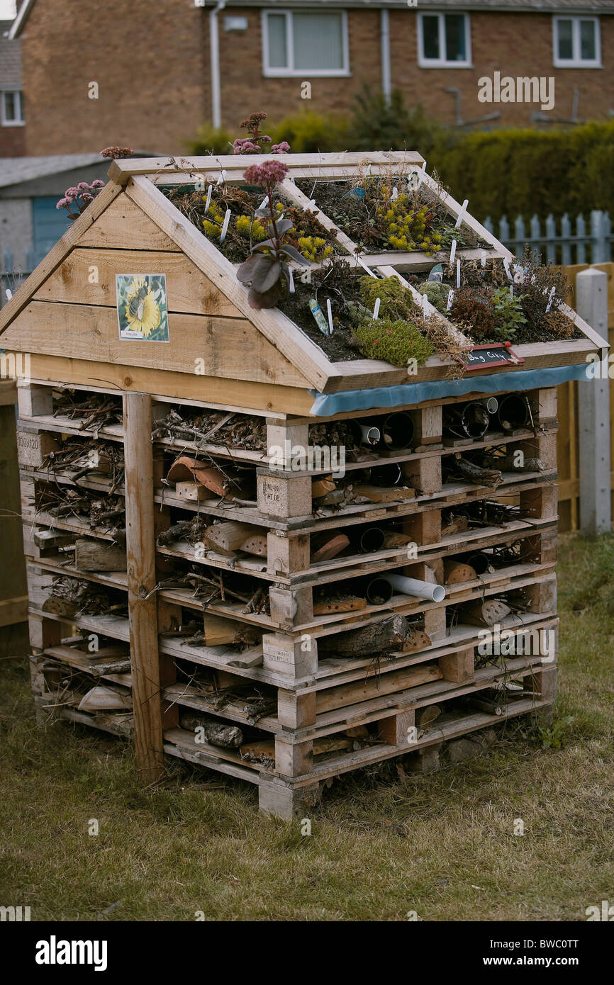 Insect hotel created using old pallets which provide an artificial home for bugs, insects and other invertebrates, - Stock Image