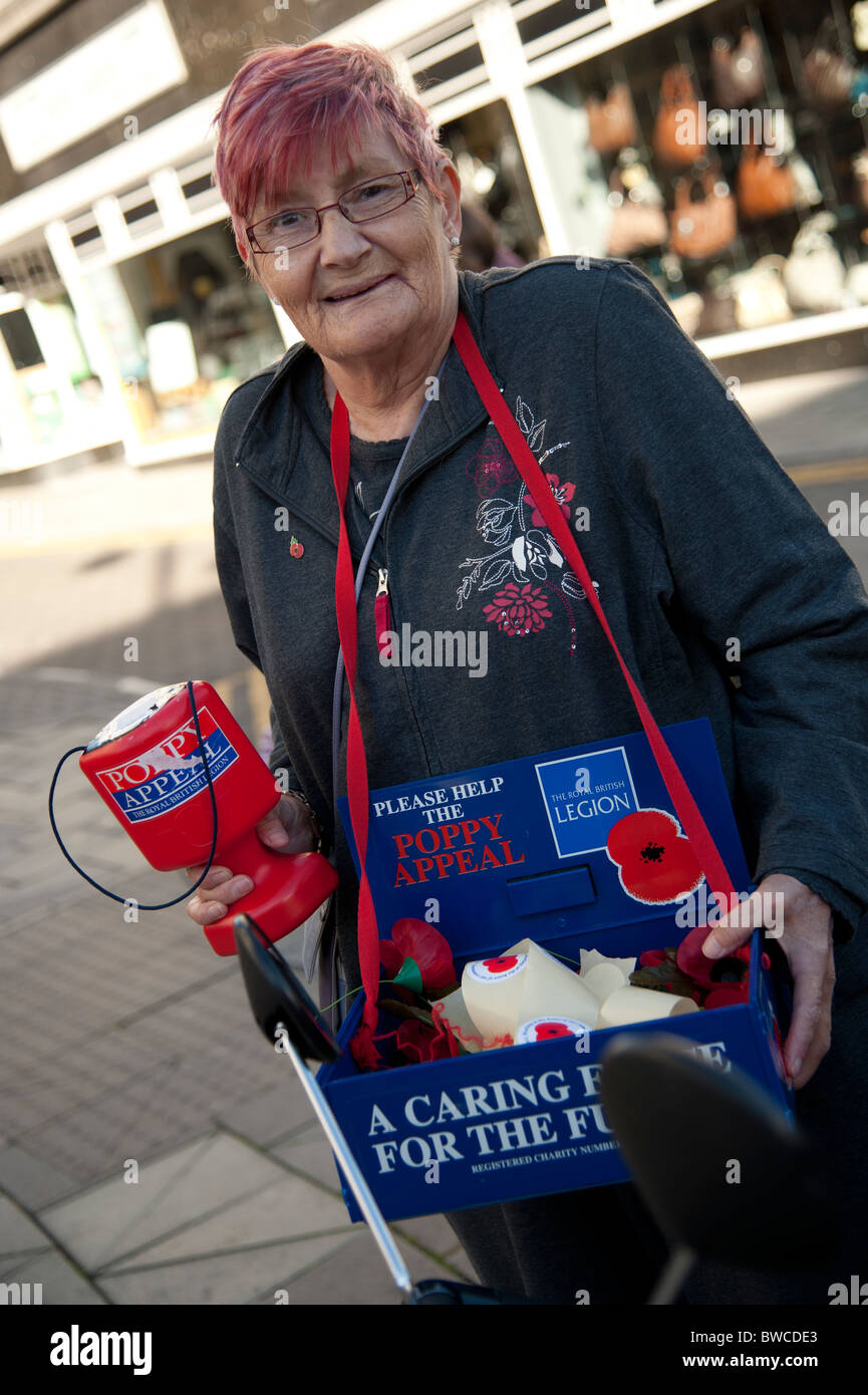 A woman selling red poppies for Remembrance Day, UK - Stock Image