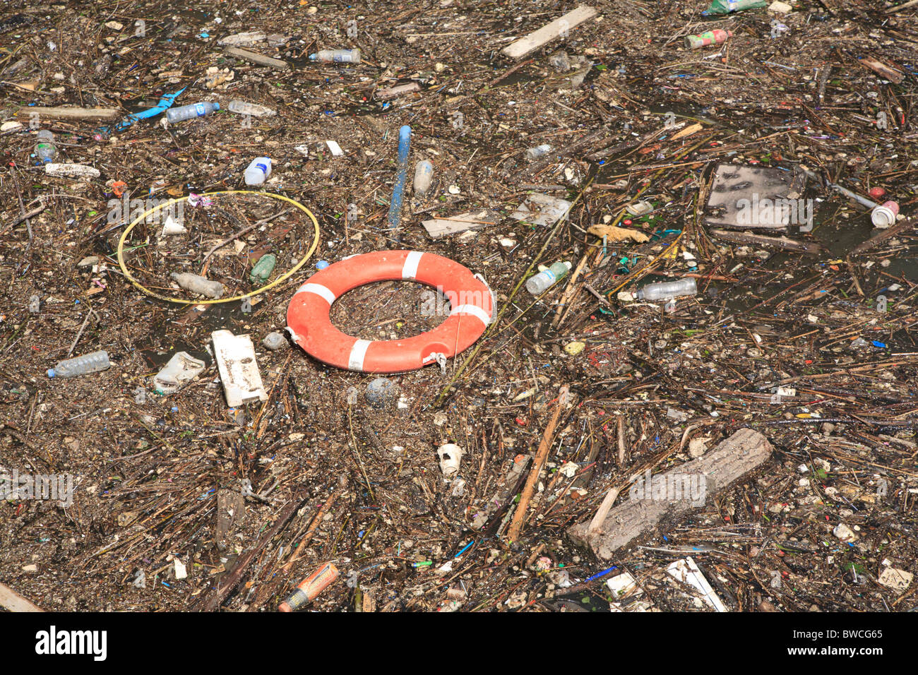 Flotsam and general rubbish floating near Butler's wharf on the River Thames London - Stock Image