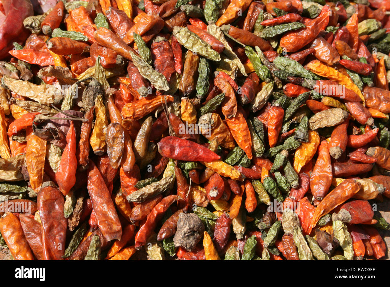 Colourful Chillies For Sale At The Key Afer Market, Omo Valley, Ethiopia - Stock Image