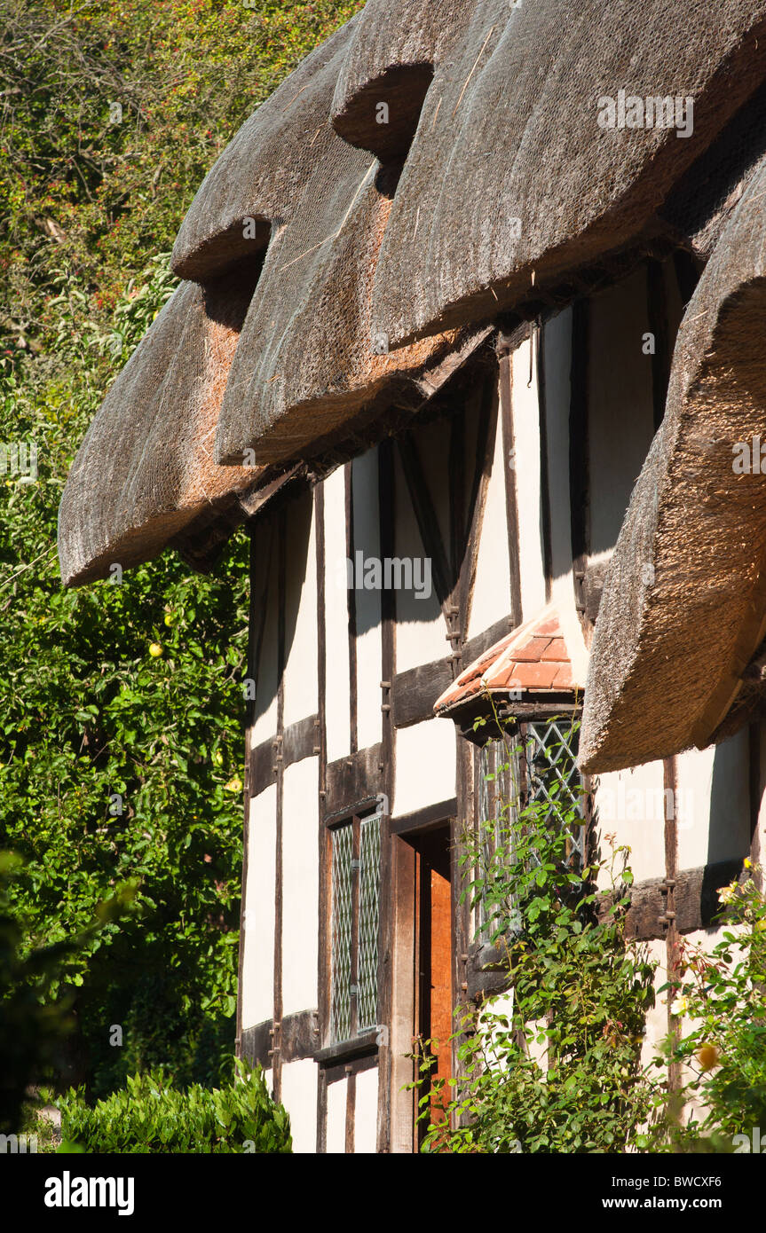 Anne Hathaway's cottage home, wife of William Shakespeare, in Stratford upon Avon Warwickshire. UK. - Stock Image