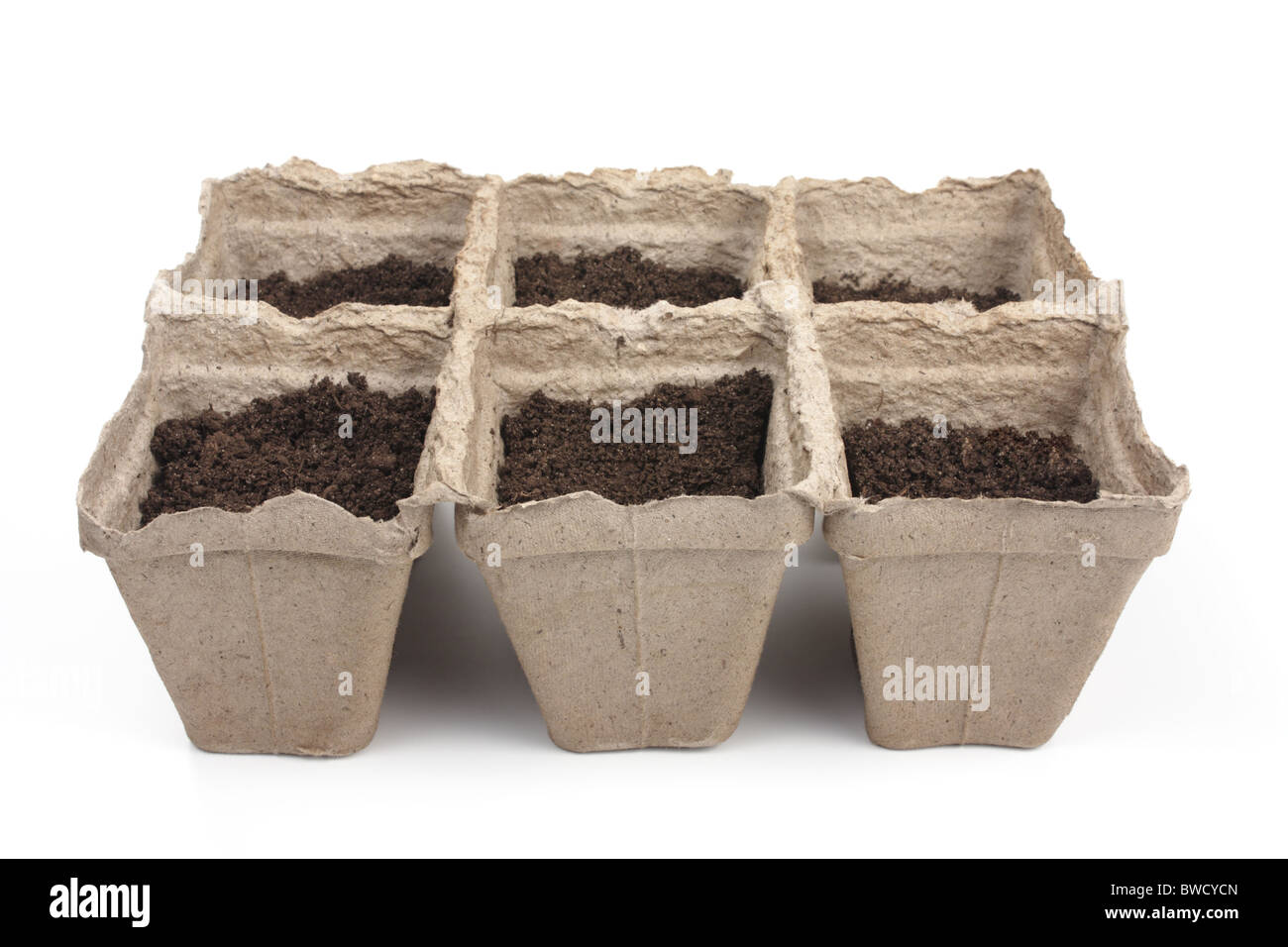 peat pots for seedlings to the ground - Stock Image