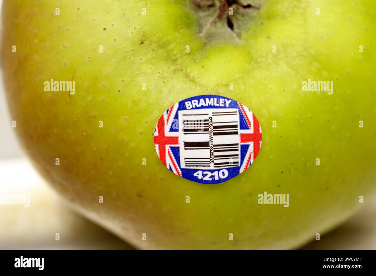 bramley cooking apple with a British Union Jack logo sign - Stock Image