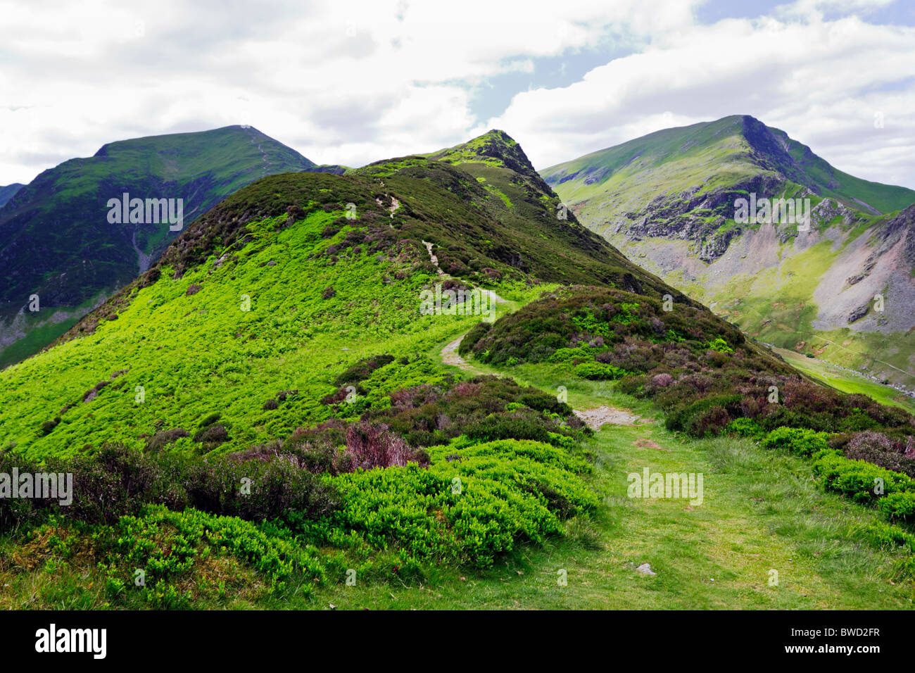 Hindscarth and Scope End in the Lake District national park, Cumbria, England, UK. - Stock Image