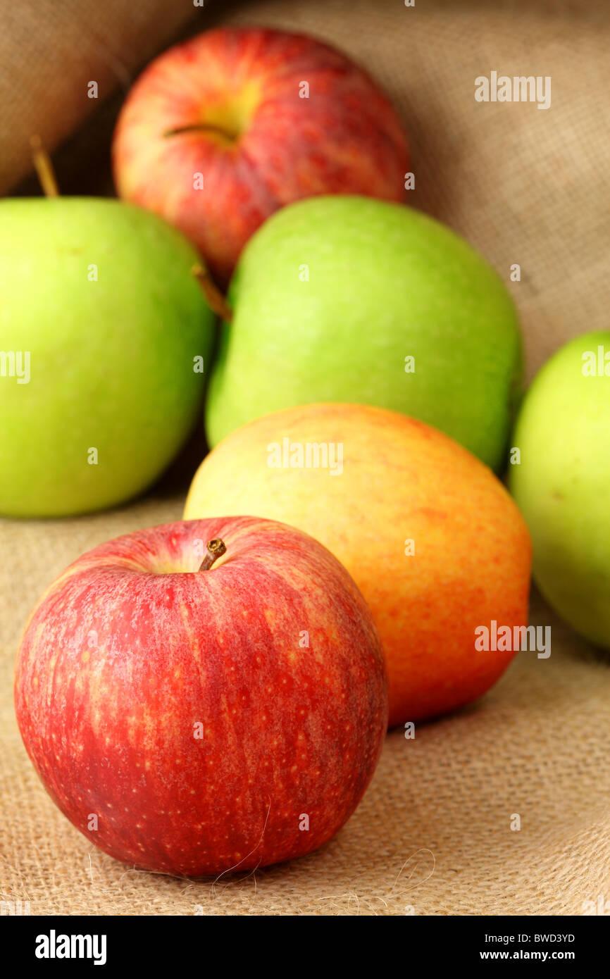 Apples - Stock Image