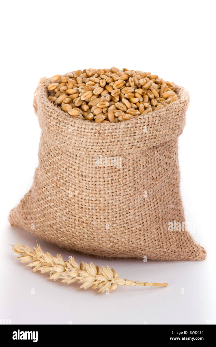 Wheat in small burlap sack - Stock Image