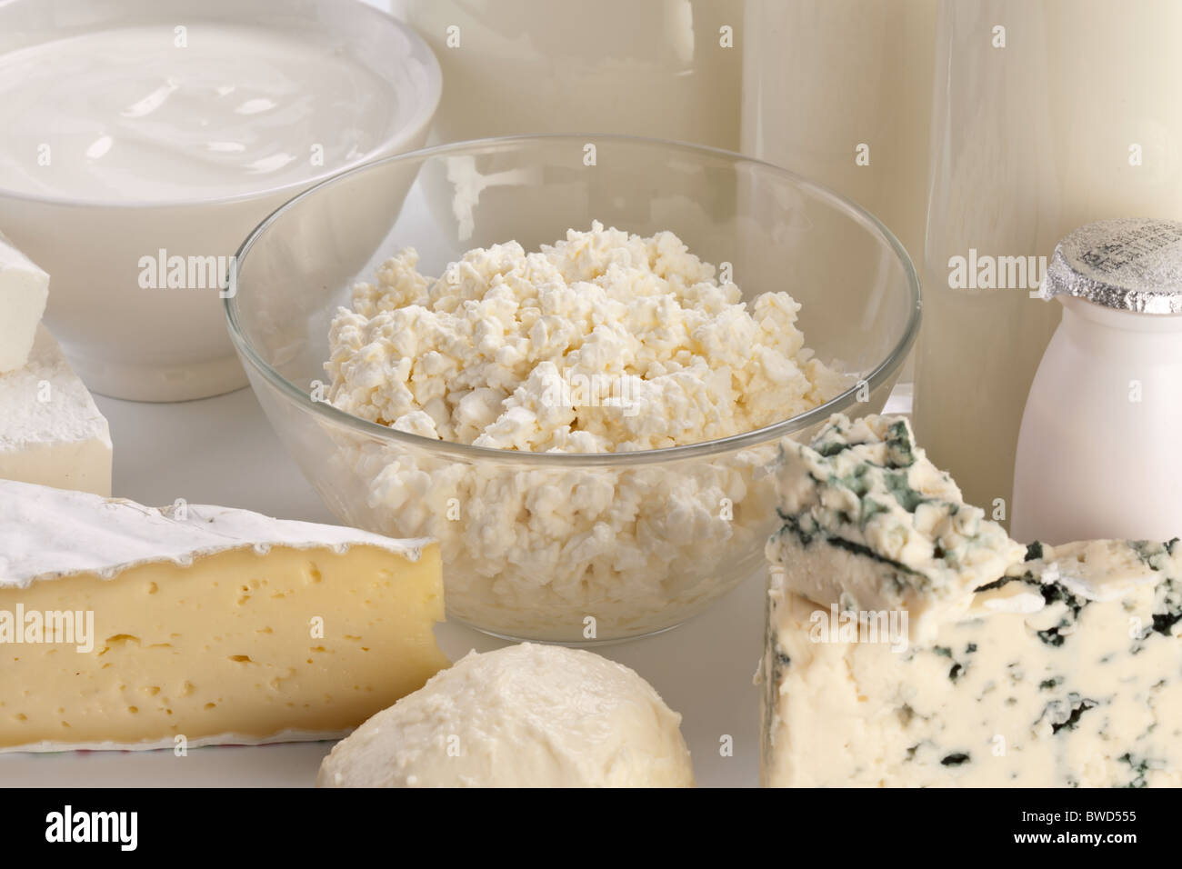 Different milk products: cheese; cream; milk. On a white background. - Stock Image
