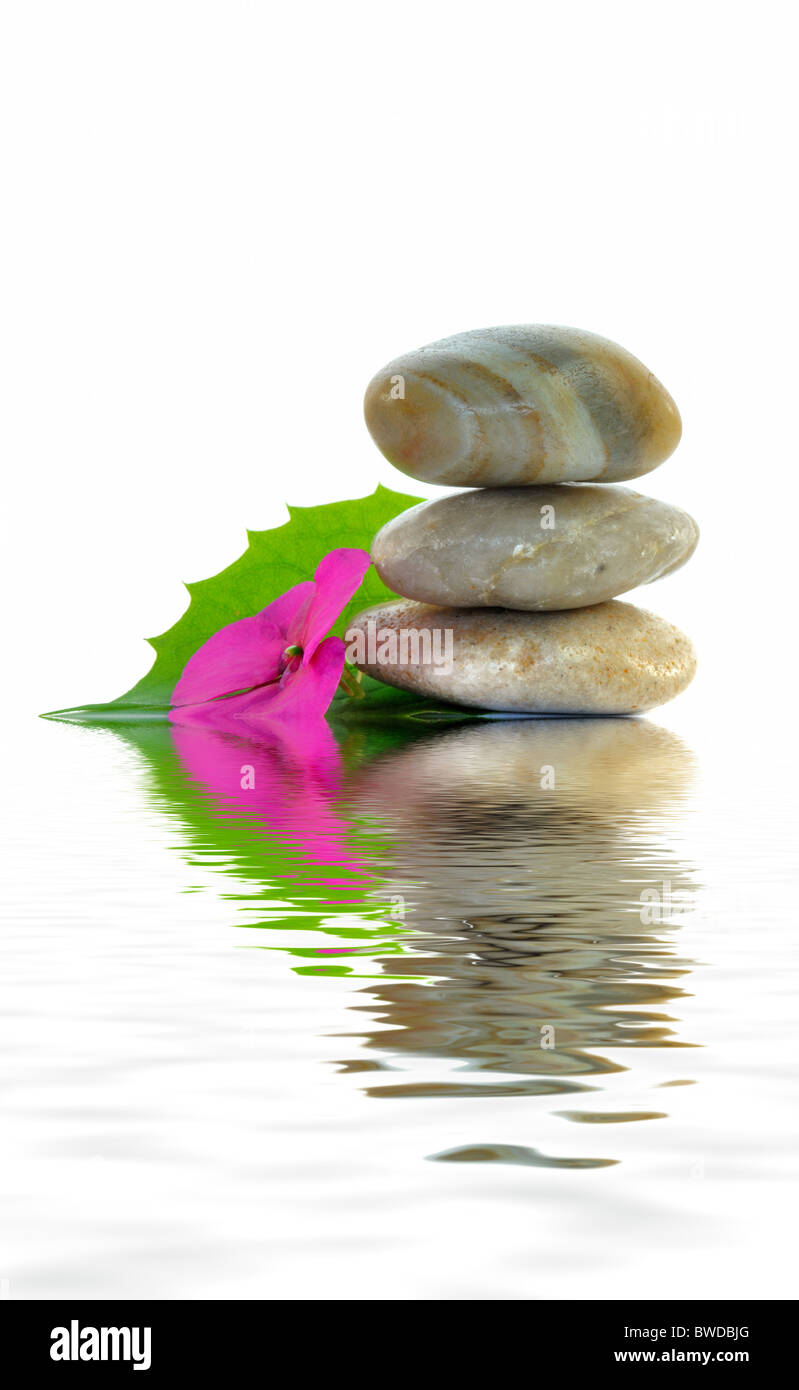 Stones And Flowers As A Symbol For Balance Stock Photo 32871288 Alamy