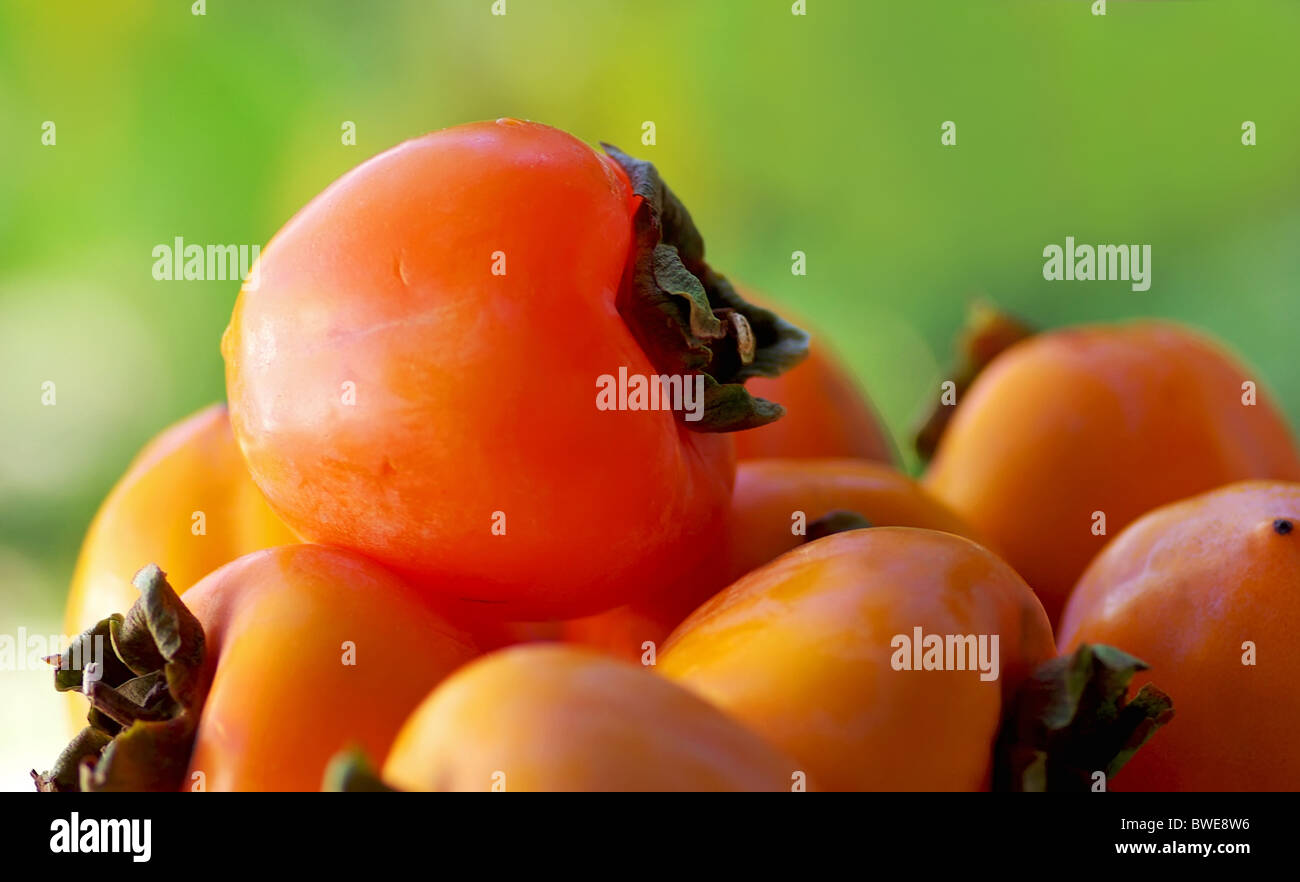 Mature caqui fruits on green background. - Stock Image