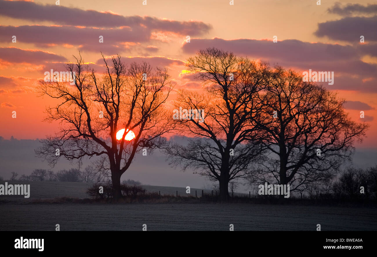 Winter sun rises from misty Rother valley over wooded hills in red sky with purple gilded clouds near Sandhurst Stock Photo