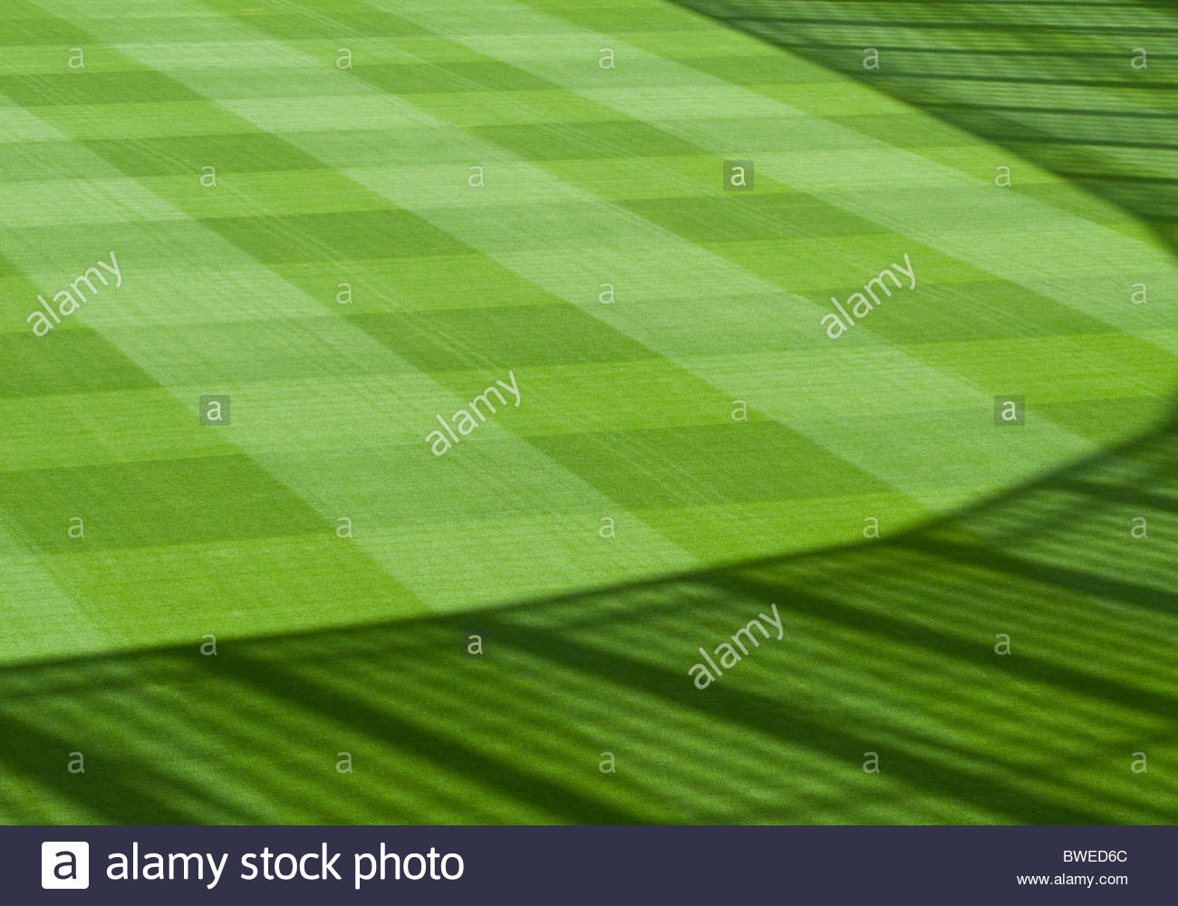 Green, landscaped grass of sports field with fence shadow - Stock Image