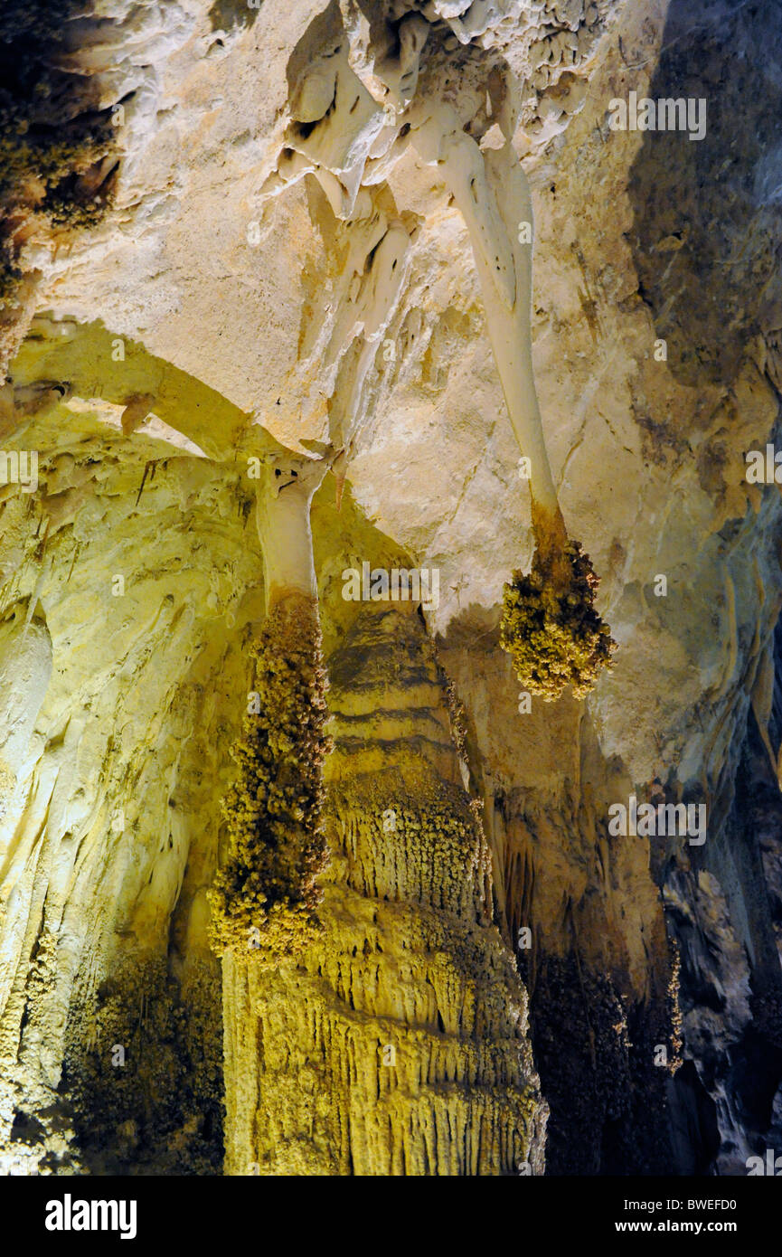 Lions Tail Area of Carlsbad Caverns National Park Stock Photo