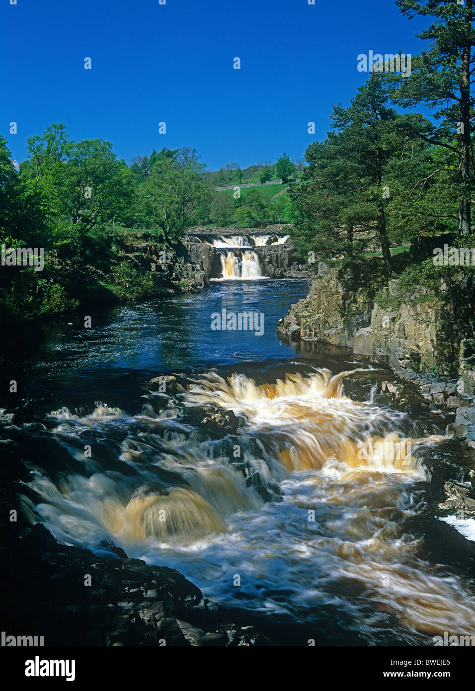 A summer view of Low Force Waterfall and the River Tees in Teesdale, County Durham Stock Photo