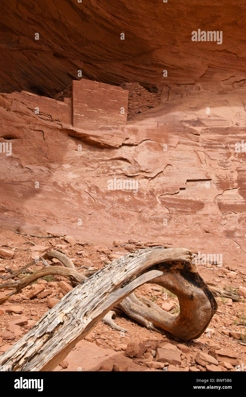About 800 year old ruins of the Native American Indians, Mystery Valley, Arizona, USA - Stock Image