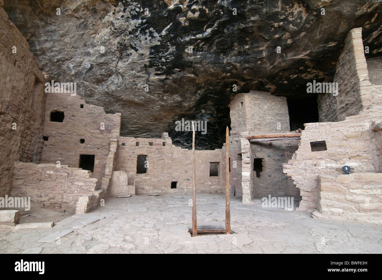 Spruce Tree House, a cliff dwelling of the Ancestral Puebloans American Indians, about 1250 years old, Mesa Verde - Stock Image