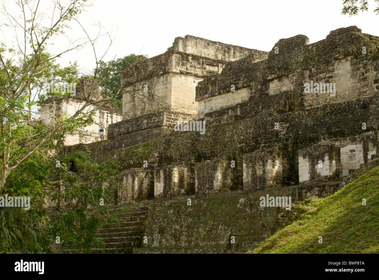 North Acropolis at the Maya ruins of Tikal, El Peten, Guatemala. Tikal is a UNESCO World Heritage Site. - Stock Image