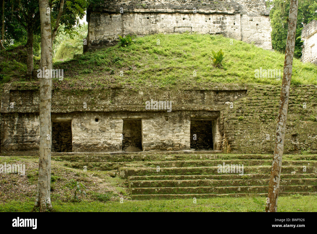 Building in the Seven Temples complex, Maya ruins of Tikal, El Peten, Guatemala. Tikal is a UNESCO World Heritage - Stock Image