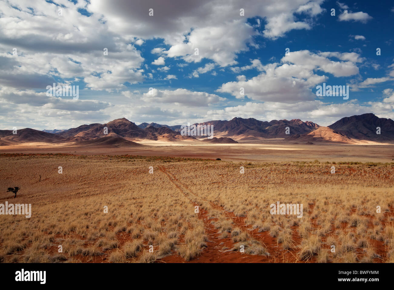 Wide view of a vehicle path in the grassland looking towards the Nubib mountains. Namib Rand, Namibia - Stock Image