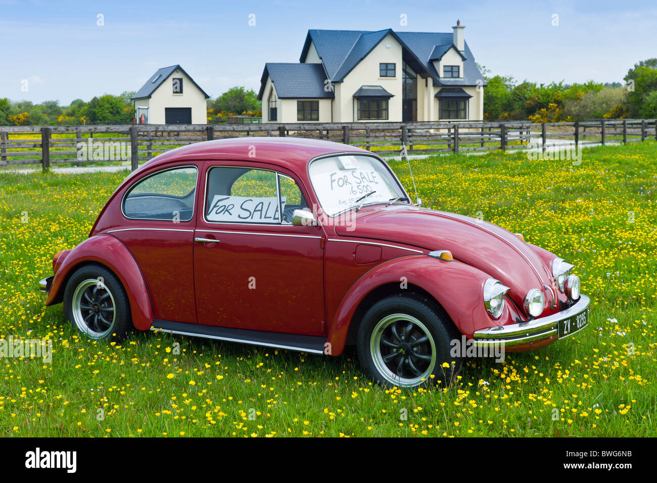 Cars For Sale Uk To Ireland: VW Beetle Car For Sale Outside Irish Home Near Taghmon