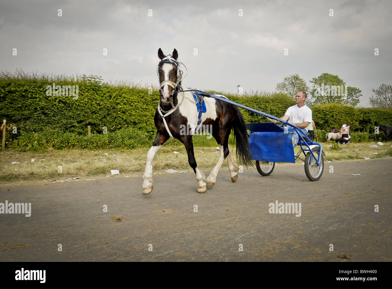 Man with pony & trap - Stock Image