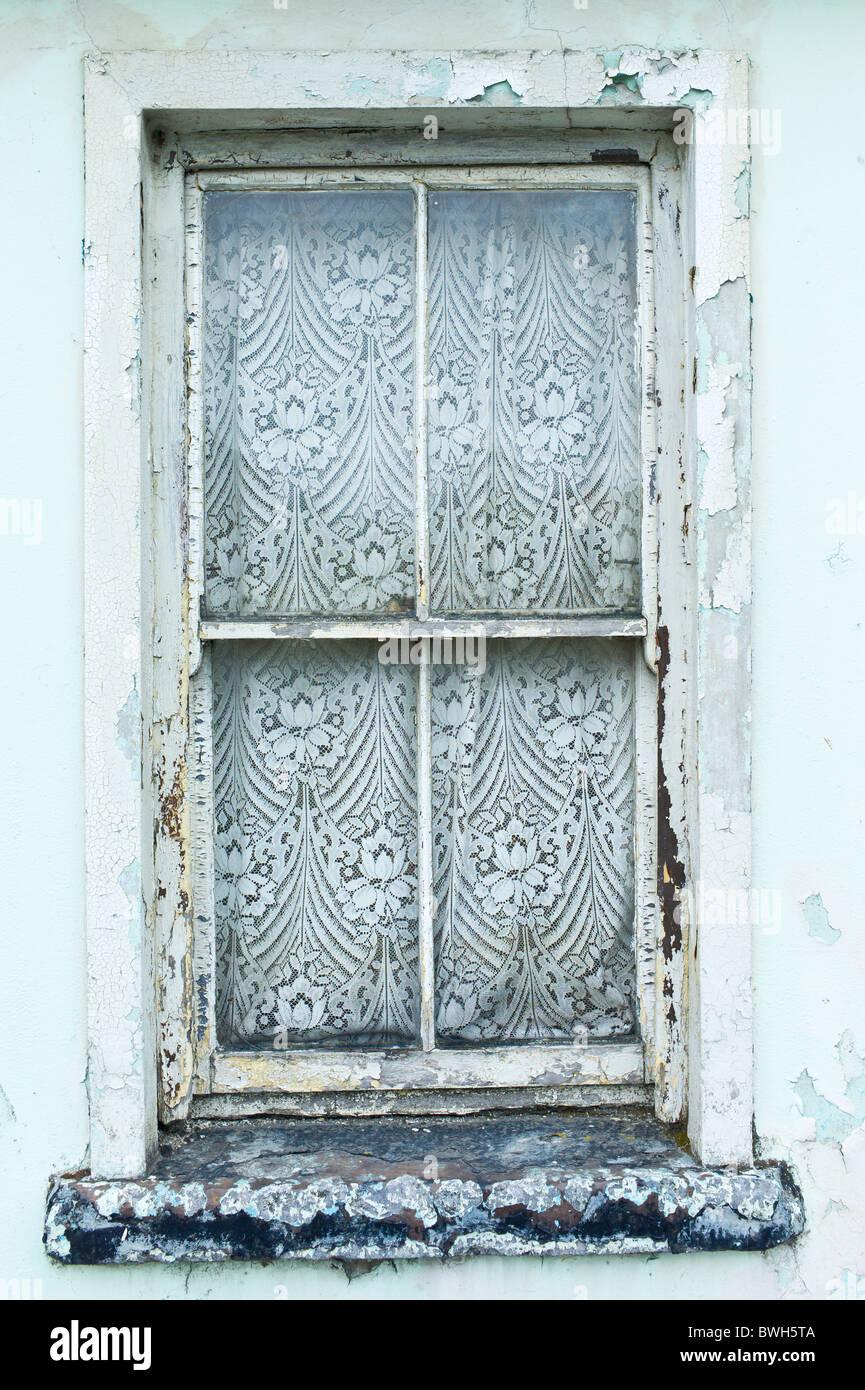 irish wayfair keyword lace curtains kitchen shubhika curtain