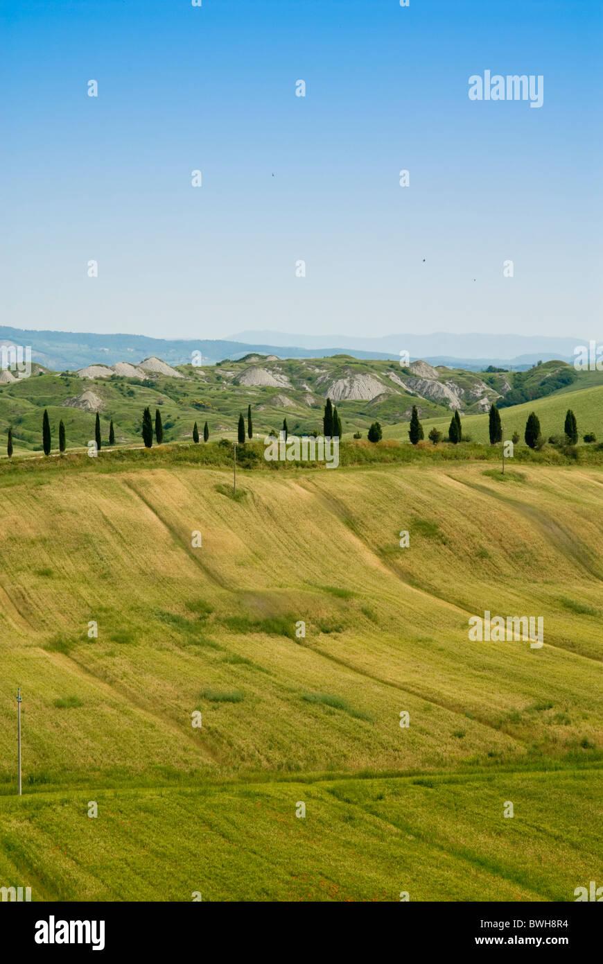 Crete senesi area, near Asciano, Siena Province, Siena, Tuscany, Italy, Europe Stock Photo