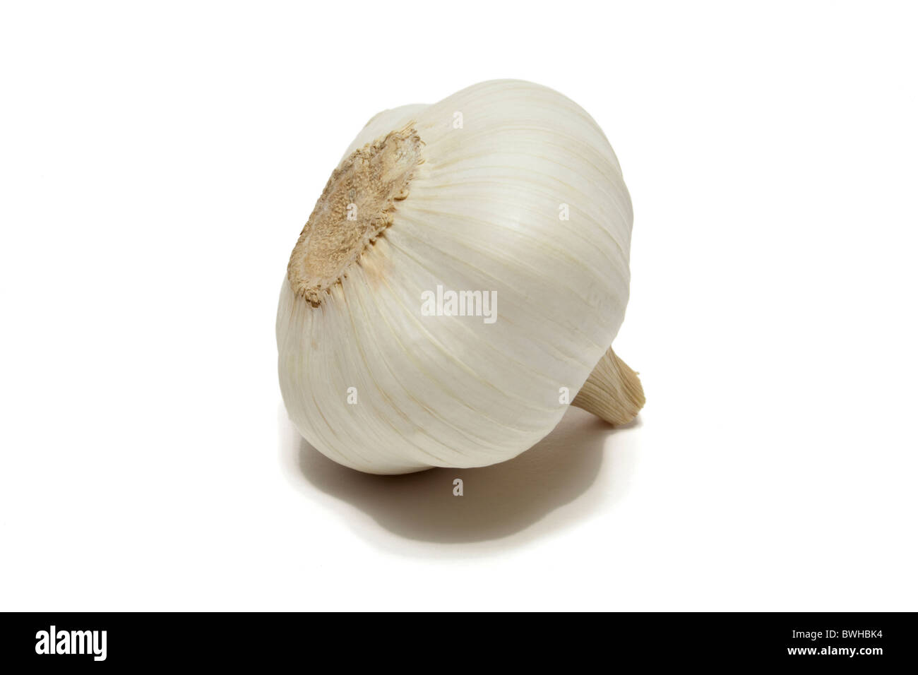 Garlic - Stock Image