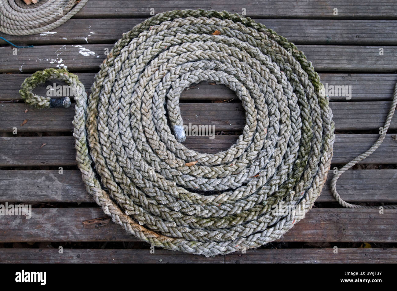 A coil of rope - Stock Image